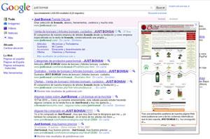 Vista previa en Google